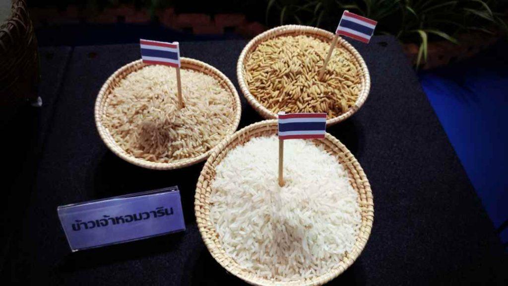 Fakta-Fakta Menarik Mengenai Bidang Pertanian Thailand